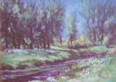 <li>Titre: Le ruisseau de la Saulaie</li><li>Médium: Huile sur toile</li><li>Dimension: 9 x 12</li><li> Collection privée</li></ul><p>