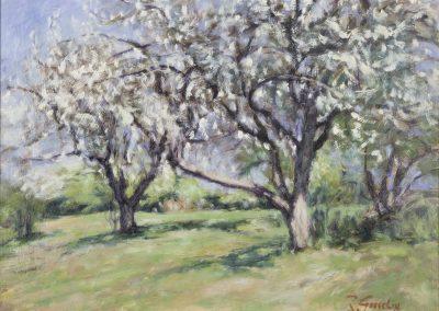 <li>Titre: Pommiers en fleurs II</li><li>Médium: huile sur aspenite</li><li>Dimension: 11 x 16</li><li> Disponible </li></ul><p>
